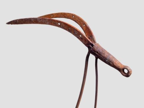 Antilope-tête